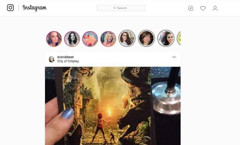 instagram stories display