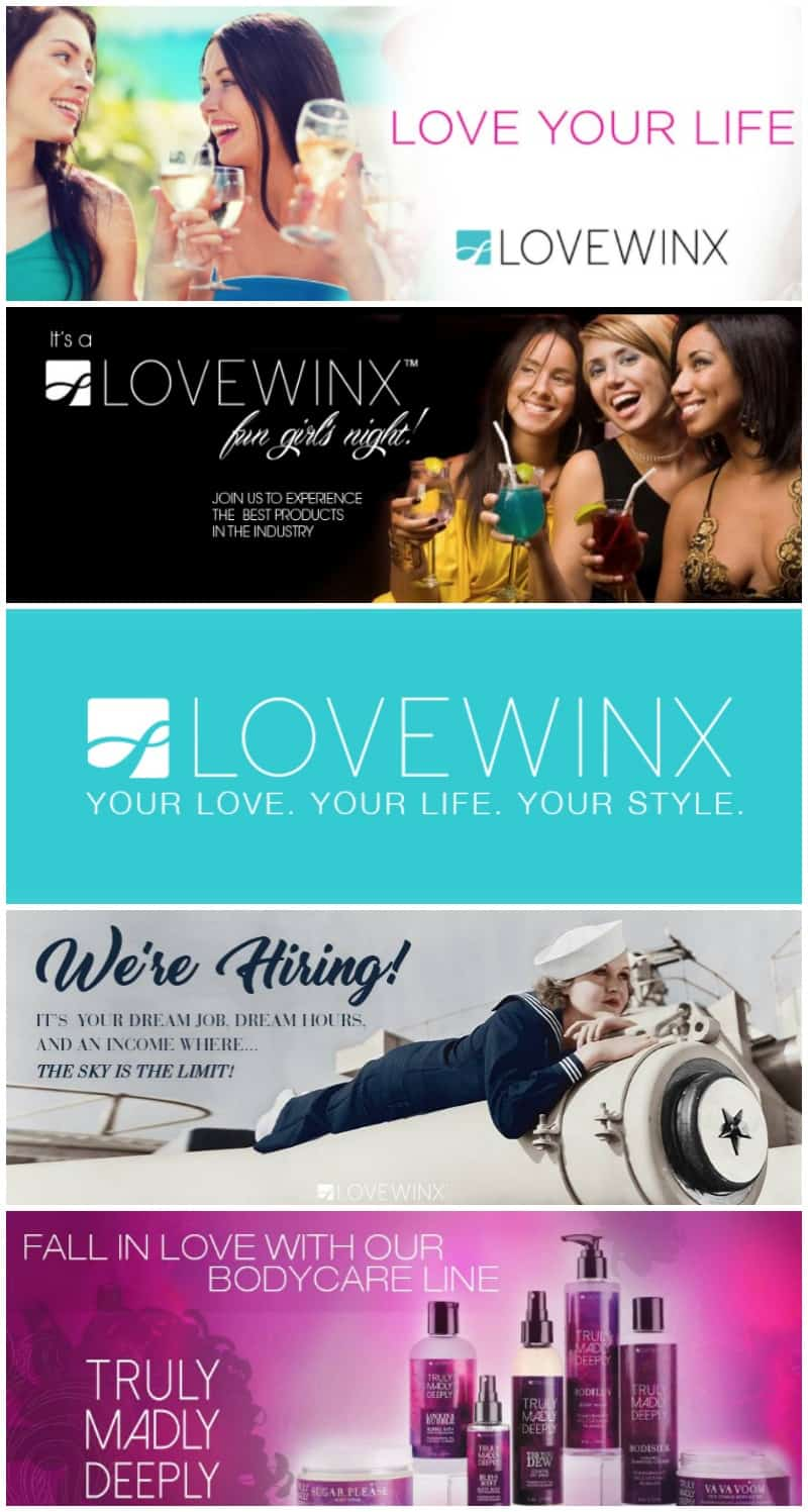 LOVEWINX Business Opportunity