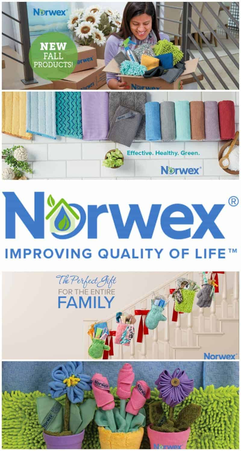 Norwex Business Opportunity